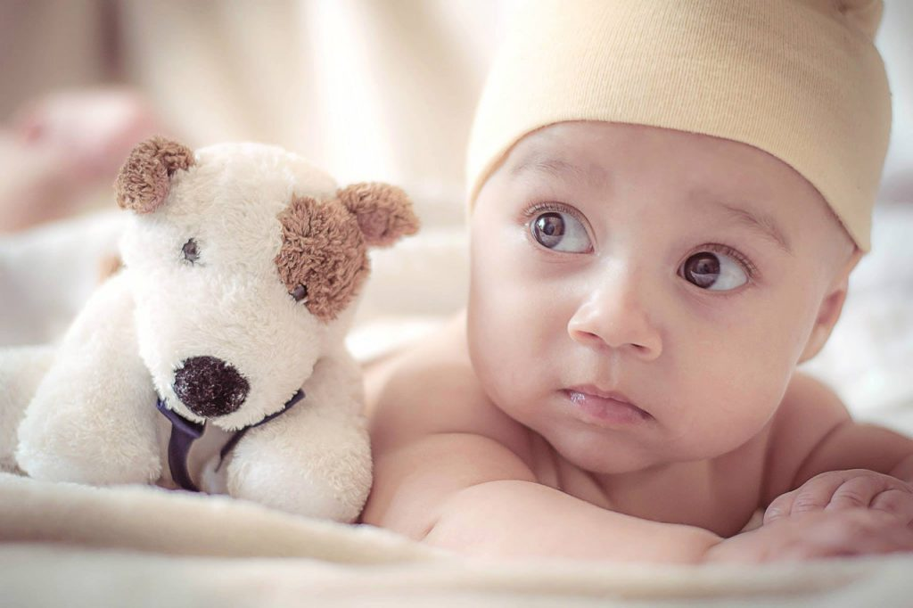 Infant with a toy dog